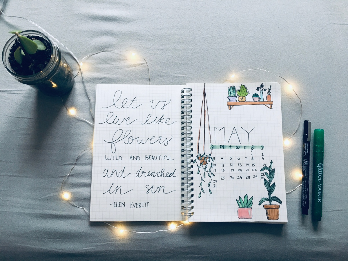 May bullet journal setup *proudly shows you*